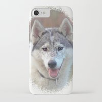 husky iPhone & iPod Cases featuring Husky by Doug McRae