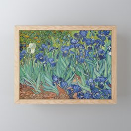 Irises by Vincent van Gogh Framed Mini Art Print