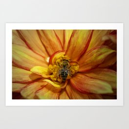 bee Grounded Art Print