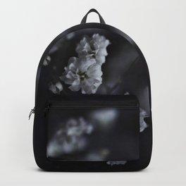 Delicate White Flowers in Darkness - Gypsophila Backpack