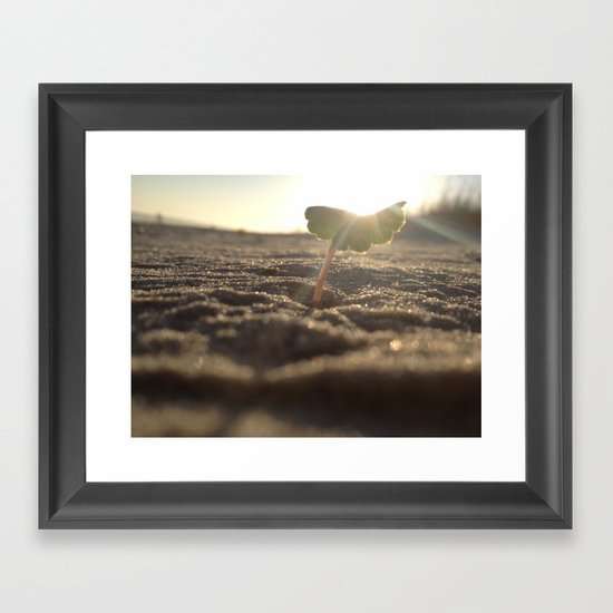 Myrtle Beach Framed Art Print