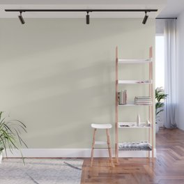 Dark Creamy Off White Solid Color Pairs with Farrow and Ball - James White 2010 - Accent to Arsenic Wall Mural