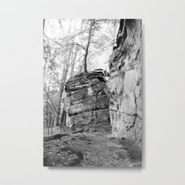 Perched Atop Metal Print