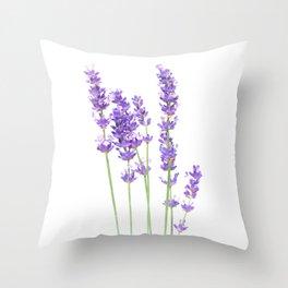 Lavender Throw Pillow