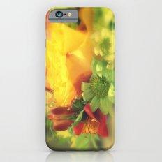 Birthday wishes iPhone 6s Slim Case
