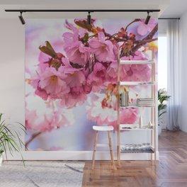 Pink Japanese Cherry Blossom, Sakura Wall Mural