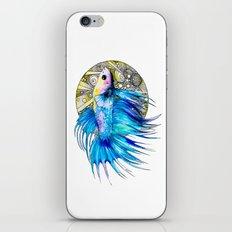 Betta iPhone & iPod Skin