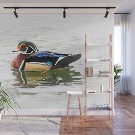 Wood Duck Three Wall Mural