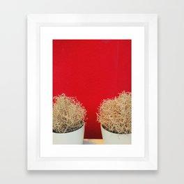 Sundried Framed Art Print