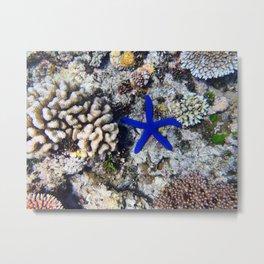 Starfish on the Reef Metal Print