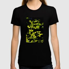 late summer sunny maple leaves T-shirt