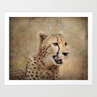 cheetah Art Prints featuring Cheetah by Jai Johnson