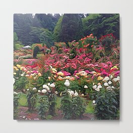 Impresion of a Rose Garden Metal Print