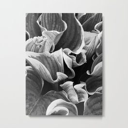 Leafing on the Midnight Train Metal Print