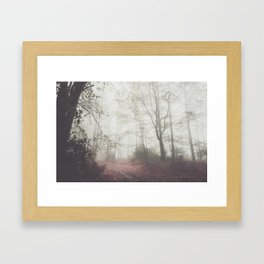 Autumn paths II - Landscape and Nature Photography Framed Art Print