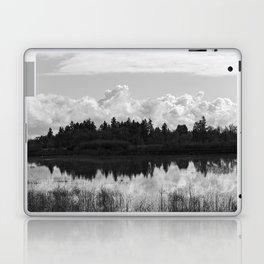 Wetlands Black and White Laptop & iPad Skin