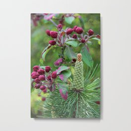 Apple tree and pinewood Metal Print