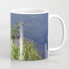 Turtles by a water pond and water plants in a garden.  Nature  photography. Mug