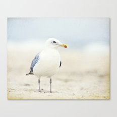 Seagull Beach Photography, Coastal Bird Jersey Shore Art Canvas Print