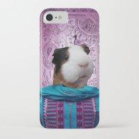 guinea pig iPhone & iPod Cases featuring Bollywood Purple Guinea Pig  by Sarina Saddiq