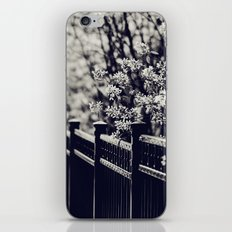 Fenced in iPhone & iPod Skin