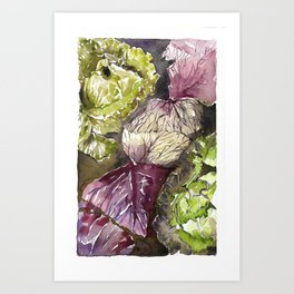 Any Thoughts on Cabbages? Art Print