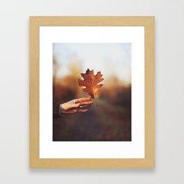 Catching a bit of Autumn Framed Art Print