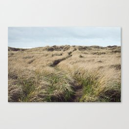 Oregon Dune Grass Adventure - Nature Photography Canvas Print