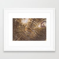 tree rings Framed Art Prints featuring Tree Rings by Kimsey Price