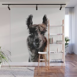 FLUFFY LAMA Wall Mural