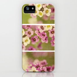 Summer ~ collage iPhone Case
