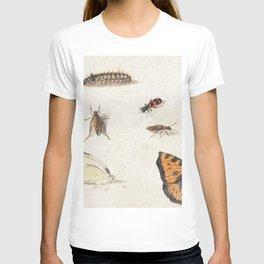 Sheet of Studies of Nine Insects (1660-1665) by Jan van Kessel T-shirt