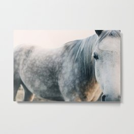 Seeing Metal Print