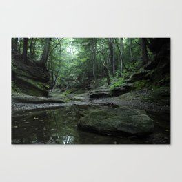 Hocking Hills Canvas Print