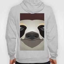 2D sloth Hoody