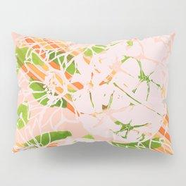 Soft summer Astrophytum asterias Pillow Sham