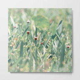 The Grasshoppers Perspective Metal Print