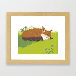 Snoozy Red Fox Framed Art Print