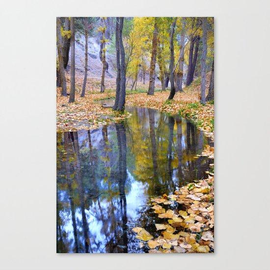 """Curves"". Autumn forest Canvas Print"
