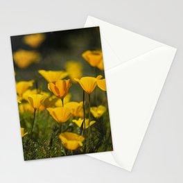Springtime Poppies Stationery Cards
