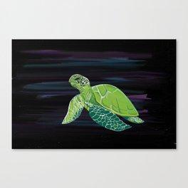 Tortuga Canvas Print