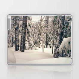 Winter Woods 2 Laptop & iPad Skin