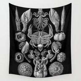 Ernst Haeckel Cirripedia Barnacles Crabs Wall Tapestry