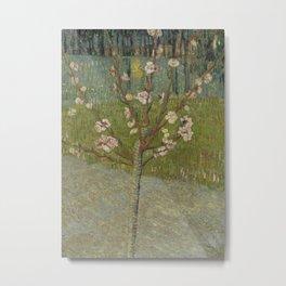 Almond Tree in Blossom Metal Print