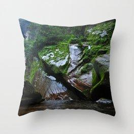 Peruvian Amazon III Throw Pillow