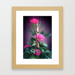 Rosalia. Framed Art Print