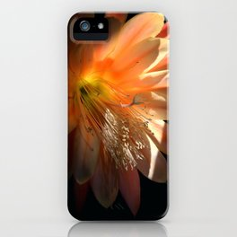 Catching A Few Rays iPhone Case