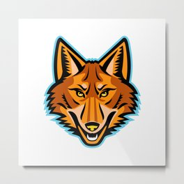 Coyote Head Front Mascot Metal Print