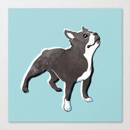 Boston Terrier 2 Canvas Print