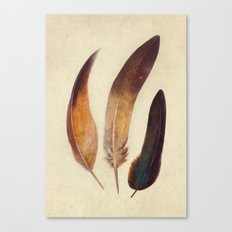 Three Feathers  Canvas Print